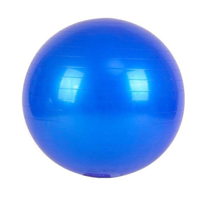 Exercise Stability Ball Blue 65 cm