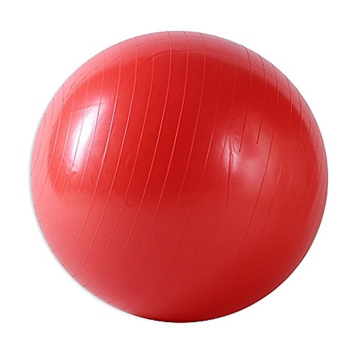 Exercise Stability Ball Red 55 cm